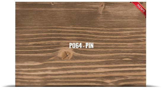 P064 - PIN