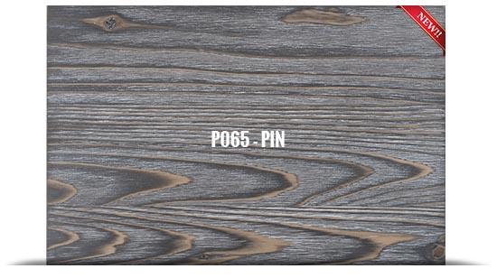 P065 - PIN