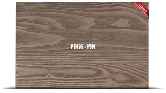 P066 - PIN