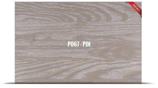 P067 - PIN