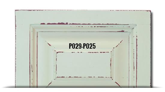P029-P025